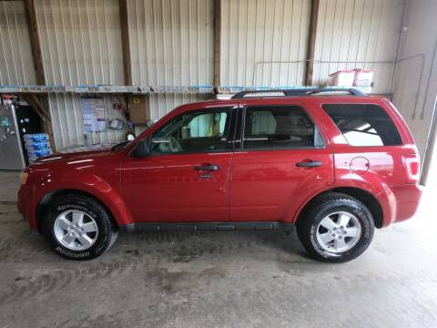 2009 Ford Escape for sale at Alpha Auto in Toronto SD