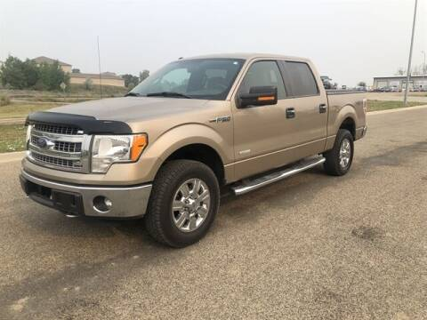 2013 Ford F-150 for sale at CK Auto Inc. in Bismarck ND