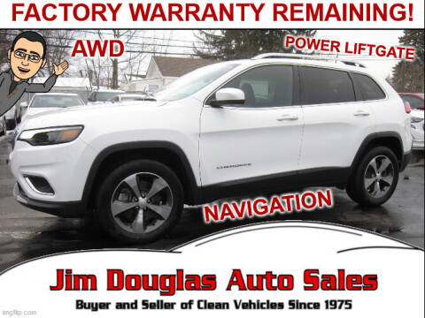 2019 Jeep Cherokee for sale at Jim Douglas Auto Sales in Pontiac MI