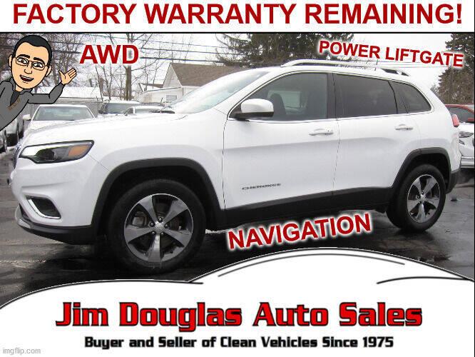2019 Jeep Cherokee for sale at Jim Douglas Auto Sales in Pontiac MI