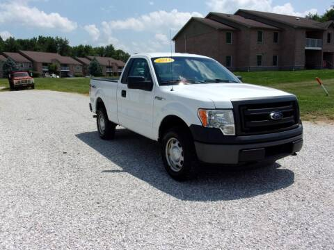 2014 Ford F-150 for sale at BABCOCK MOTORS INC in Orleans IN