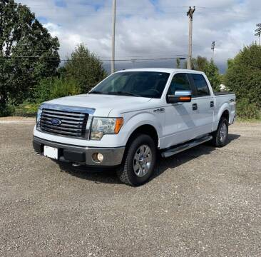2011 Ford F-150 for sale at COUNTRYSIDE AUTO SALES 2 in Russellville KY