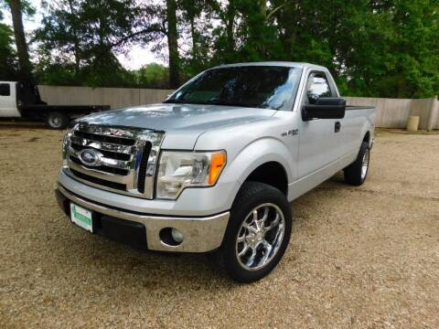 2011 Ford F-150 for sale at Commercial Vehicle Sales in Ponchatoula LA