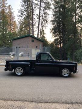 1975 Chevrolet C/K 20 Series for sale at Classic Car Deals in Cadillac MI
