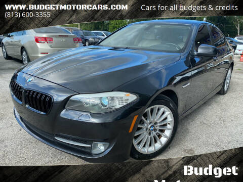 2011 BMW 5 Series for sale at Budget Motorcars in Tampa FL