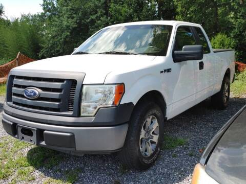 2010 Ford F-150 for sale at Snap Auto in Morganton NC