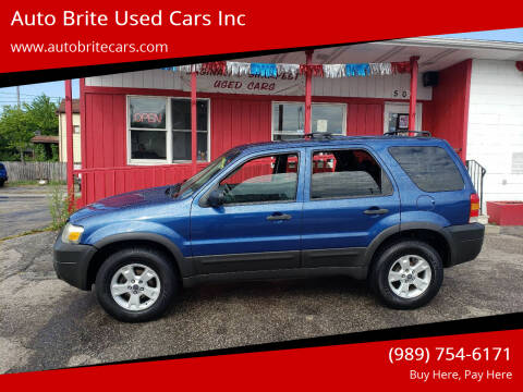 2007 Ford Escape for sale at Auto Brite Used Cars Inc in Saginaw MI