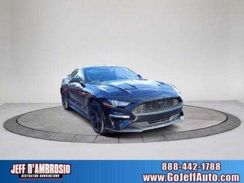 2018 Ford Mustang for sale at Jeff D'Ambrosio Auto Group in Downingtown PA