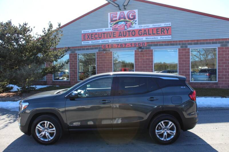2019 GMC Terrain for sale at EXECUTIVE AUTO GALLERY INC in Walnutport PA