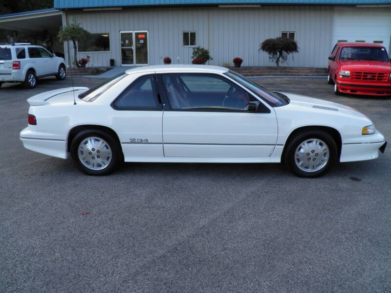 1991 Chevrolet Lumina for sale at Ted Davis Auto Sales in Riverton WV