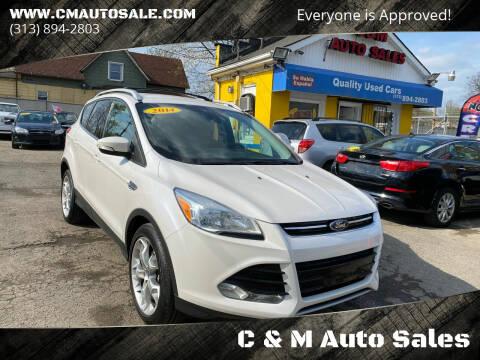 2014 Ford Escape for sale at C & M Auto Sales in Detroit MI