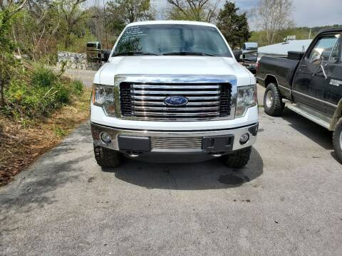 2012 Ford F-150 for sale at DISCOUNT AUTO SALES in Johnson City TN