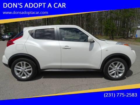 2014 Nissan JUKE for sale at DON'S ADOPT A CAR in Cadillac MI
