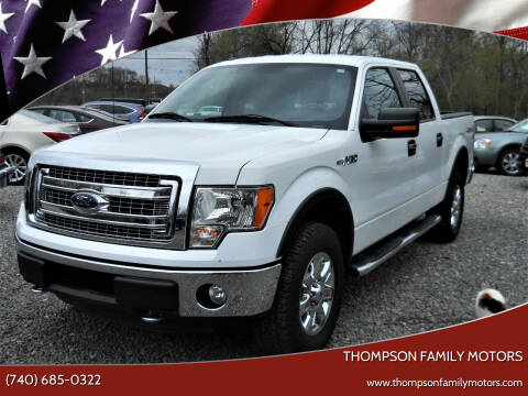 2013 Ford F-150 for sale at THOMPSON FAMILY MOTORS in Senecaville OH
