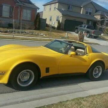 1981 Chevrolet Corvette for sale at Classic Car Deals in Cadillac MI