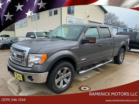 2013 Ford F-150 for sale at RamKnick Motors LLC in Pekin IL