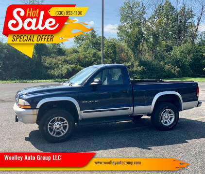 2002 Dodge Dakota for sale at Woolley Auto Group LLC in Poland OH