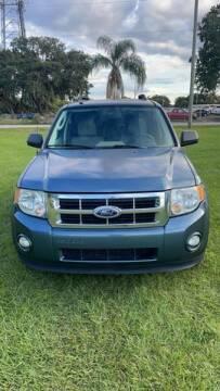 2010 Ford Escape for sale at AM Auto Sales in Orlando FL