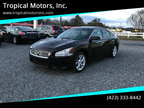 2014 Nissan Maxima for sale at Tropical Motors, Inc. in Riceville TN