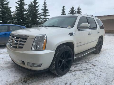2011 Cadillac Escalade for sale at Truck Buyers in Magrath AB