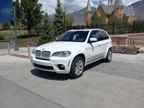 2012 BMW X5 for sale at Classic Car Deals in Cadillac MI