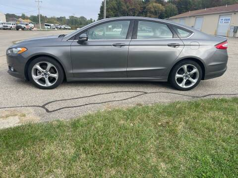 2014 Ford Fusion for sale at J & K AUTO SALES LLC in Holland MI