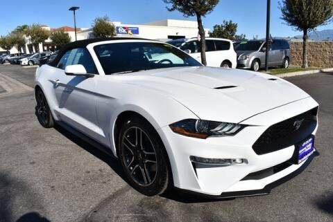2019 Ford Mustang for sale at DIAMOND VALLEY HONDA in Hemet CA