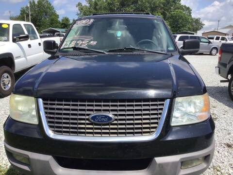 2003 Ford Expedition for sale at K & E Auto Sales in Ardmore AL