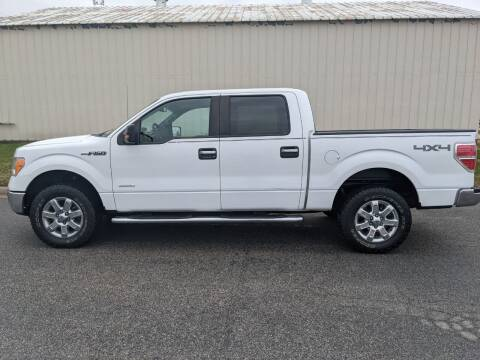 2014 Ford F-150 for sale at TNK Autos in Inman KS