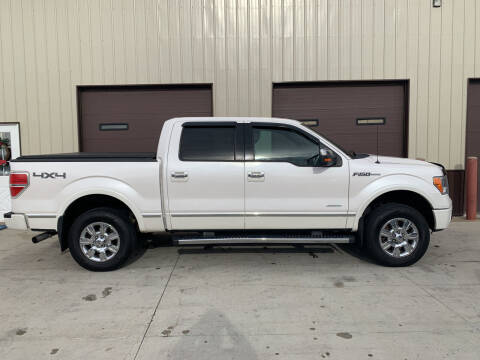 2011 Ford F-150 for sale at Dakota Auto Inc. in Dakota City NE