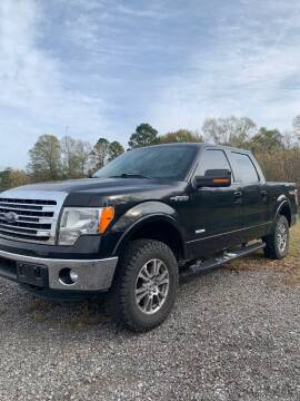 2014 Ford F-150 for sale at Smart Auto Sales of Benton in Benton AR