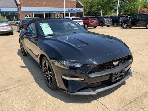2019 Ford Mustang for sale at Ganley Chevy of Aurora in Aurora OH