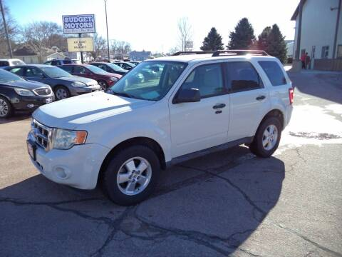 2010 Ford Escape for sale at Budget Motors in Sioux City IA