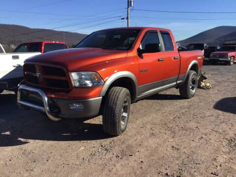 2009 Dodge Ram Pickup 1500 for sale at Troys Auto Sales in Dornsife PA