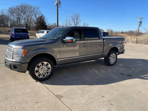 2010 Ford F-150 for sale at Truck and Auto Outlet in Excelsior Springs MO