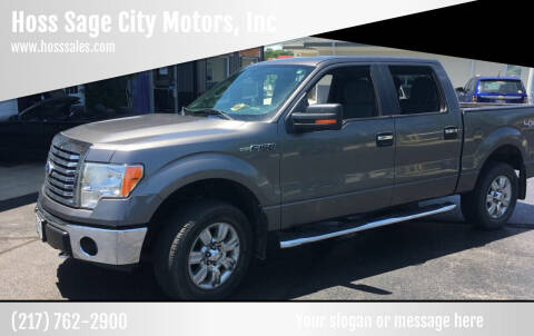 2012 Ford F-150 for sale at Hoss Sage City Motors, Inc in Monticello IL
