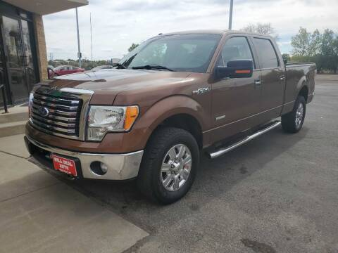 2011 Ford F-150 for sale at Will Deal Auto & Rv Sales in Great Falls MT