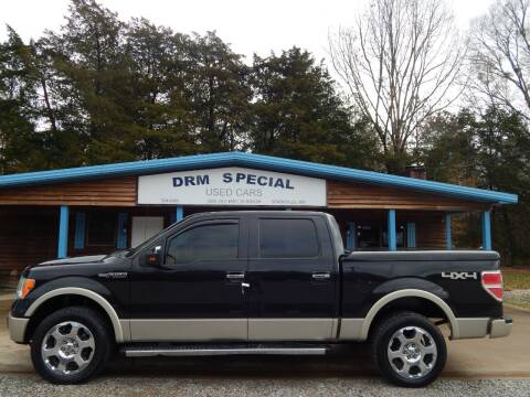 2010 Ford F-150 for sale at DRM Special Used Cars in Starkville MS