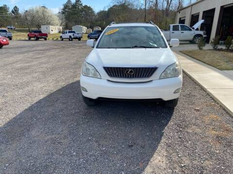 2007 Lexus RX 350 for sale at B & B AUTO SALES INC in Odenville AL