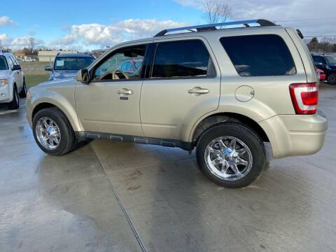 2011 Ford Escape for sale at The Auto Depot in Mount Morris MI