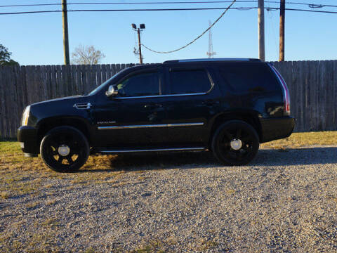 2012 Cadillac Escalade for sale at BLUE RIBBON MOTORS in Baton Rouge LA