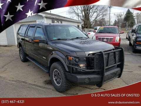 2013 Ford F-150 for sale at D & D Auto Sales Of Onsted in Onsted   Brooklyn MI