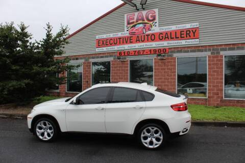 2013 BMW X6 for sale at EXECUTIVE AUTO GALLERY INC in Walnutport PA