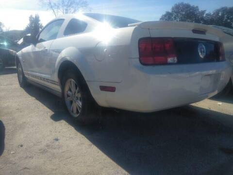 2009 Ford Mustang for sale at JacksonvilleMotorMall.com in Jacksonville FL