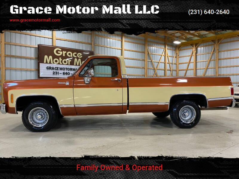 1977 Chevrolet C/K 10 Series for sale at Grace Motor Mall LLC in Traverse City MI