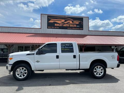 2015 Ford F-250 Super Duty for sale at Ridley Auto Sales, Inc. in White Pine TN