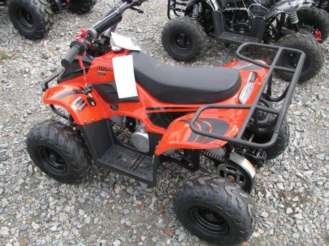 2020 HAWK G2 110CC for sale at Johnson Used Cars Inc. in Dublin GA