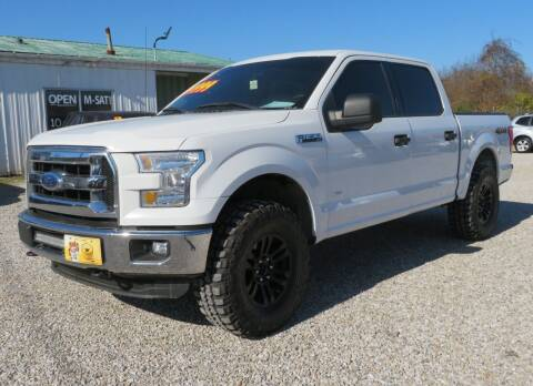 2015 Ford F-150 for sale at Low Cost Cars in Circleville OH