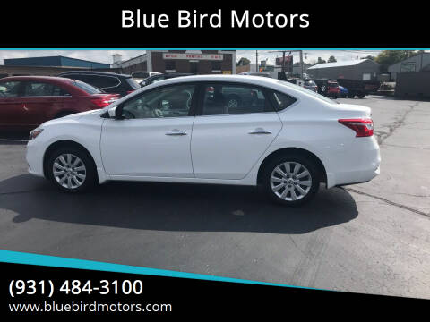 2019 Nissan Sentra for sale at Blue Bird Motors in Crossville TN