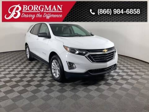 2020 Chevrolet Equinox for sale at BORGMAN OF HOLLAND LLC in Holland MI
